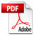 Adobe Acrobat Version of Document